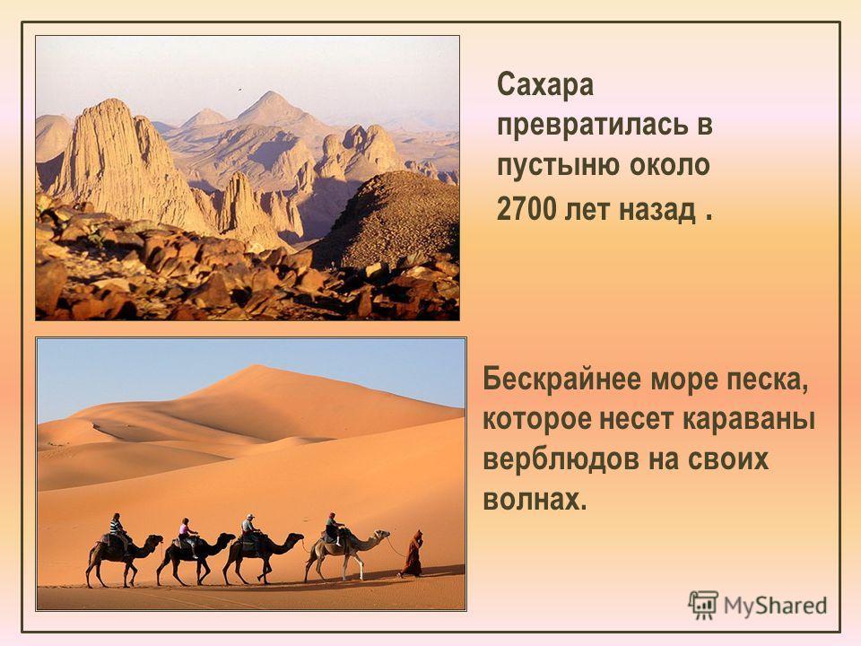 Бескрайнее море песка, которое несет караваны верблюдов на своих волнах. Сахара превратилась в пустыню около 2700 лет назад.