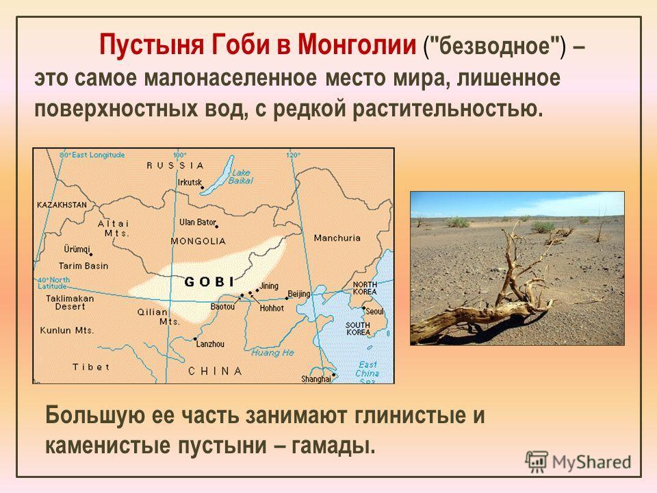Пустыня Гоби в Монголии ( безводное ) – это самое малонаселенное место мира, лишенное поверхностных вод, с редкой растительностью. Большую ее часть занимают глинистые и каменистые пустыни – гамады.