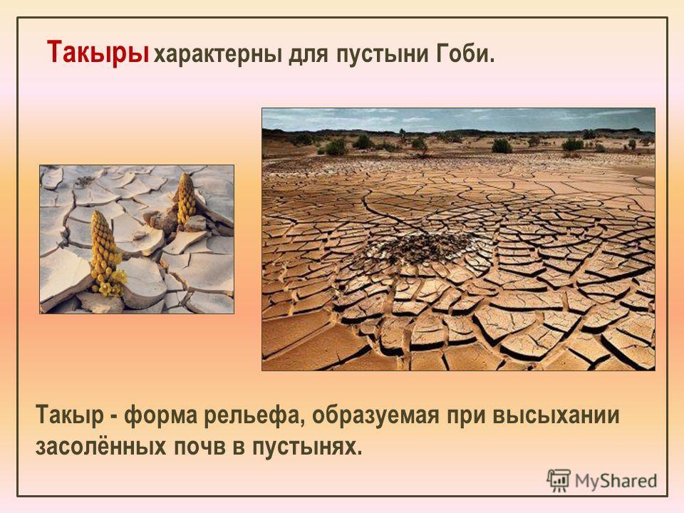 Такыры характерны для пустыни Гоби. Такыр - форма рельефа, образуемая при высыхании засолённых почв в пустынях.