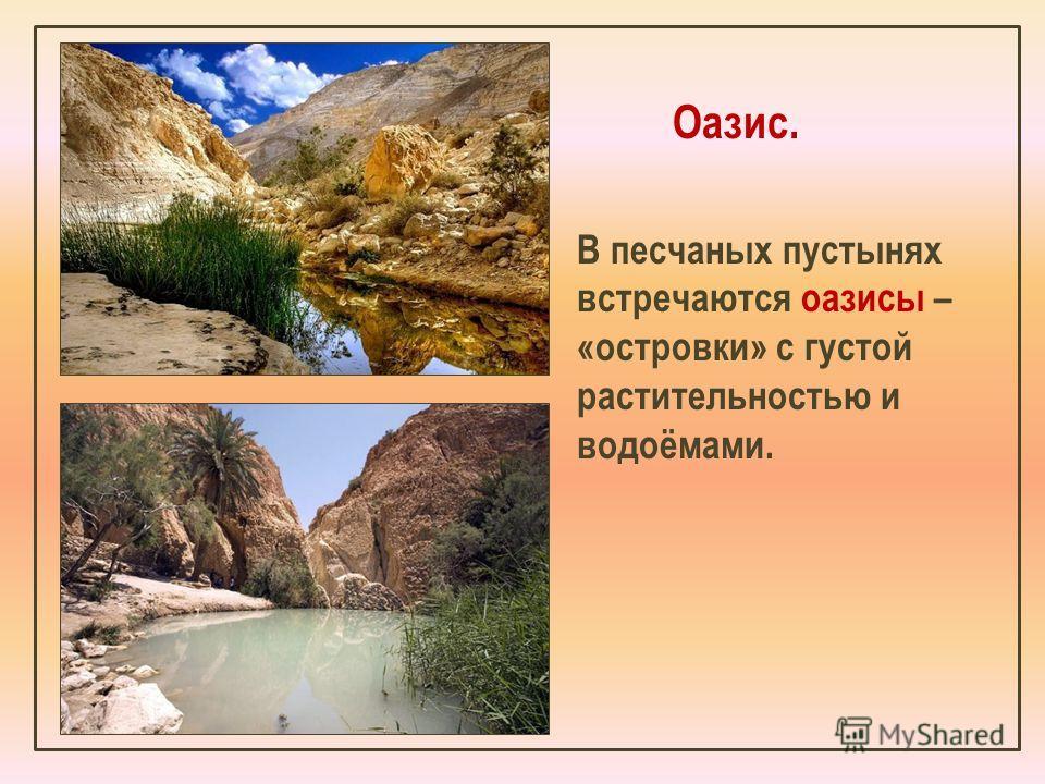 Оазис. В песчаных пустынях встречаются оазисы – «островки» с густой растительностью и водоёмами.