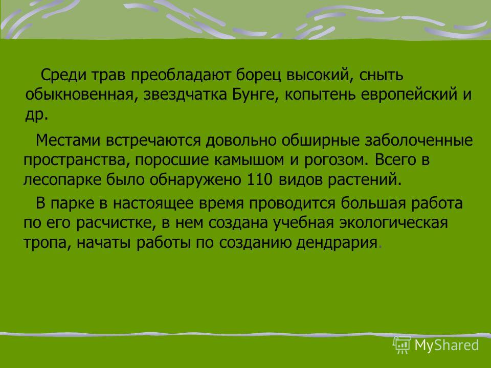 Чернушинский пригородный лесной парк До 2004 года входил в состав памятников природы Пермской области, но был исключён, так как имеет, в первую очередь, рекреационное значение как место отдыха жителей г. Чернушки. Расположен к северо- западу от г.Чер