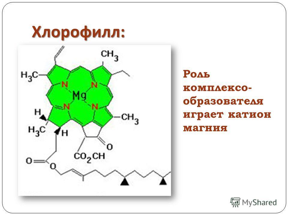 Хлорофилл : Роль комплексо- образователя играет катион магния