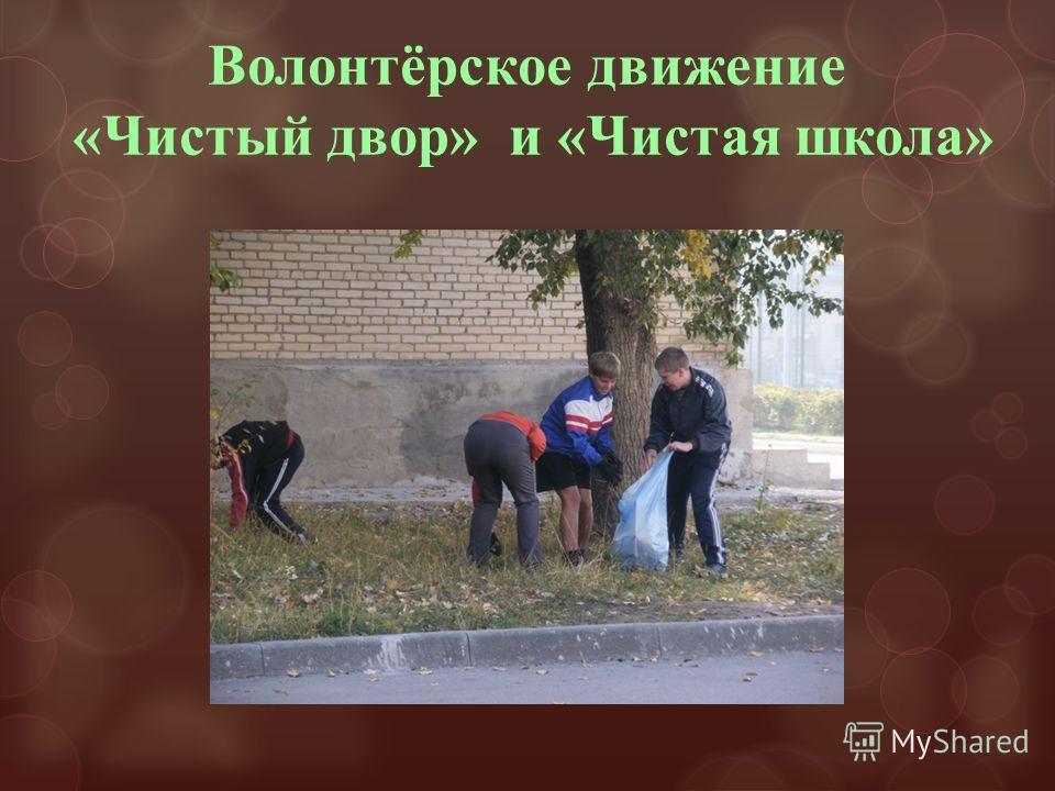 Волонтёрское движение «Чистый двор» и «Чистая школа»