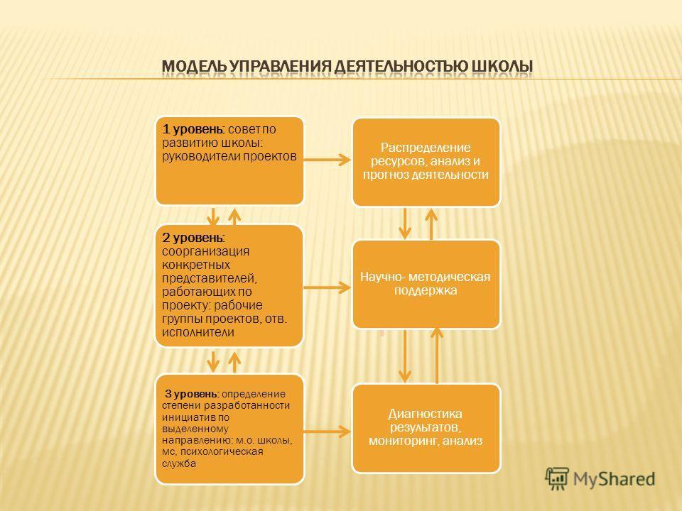 1 уровень: совет по развитию школы: руководители проектов 2 уровень: соорганизация конкретных представителей, работающих по проекту: рабочие группы проектов, отв. исполнители 3 уровень: определение степени разработанности инициатив по выделенному нап