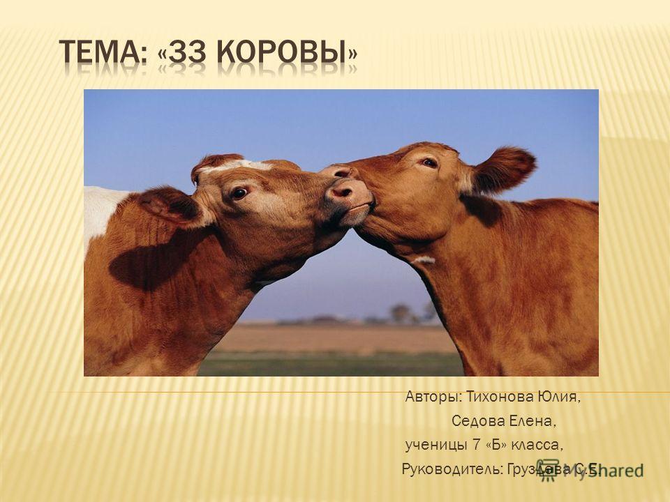 Авторы: Тихонова Юлия, Седова Елена, ученицы 7 «Б» класса, Руководитель: Груздева С.Е.