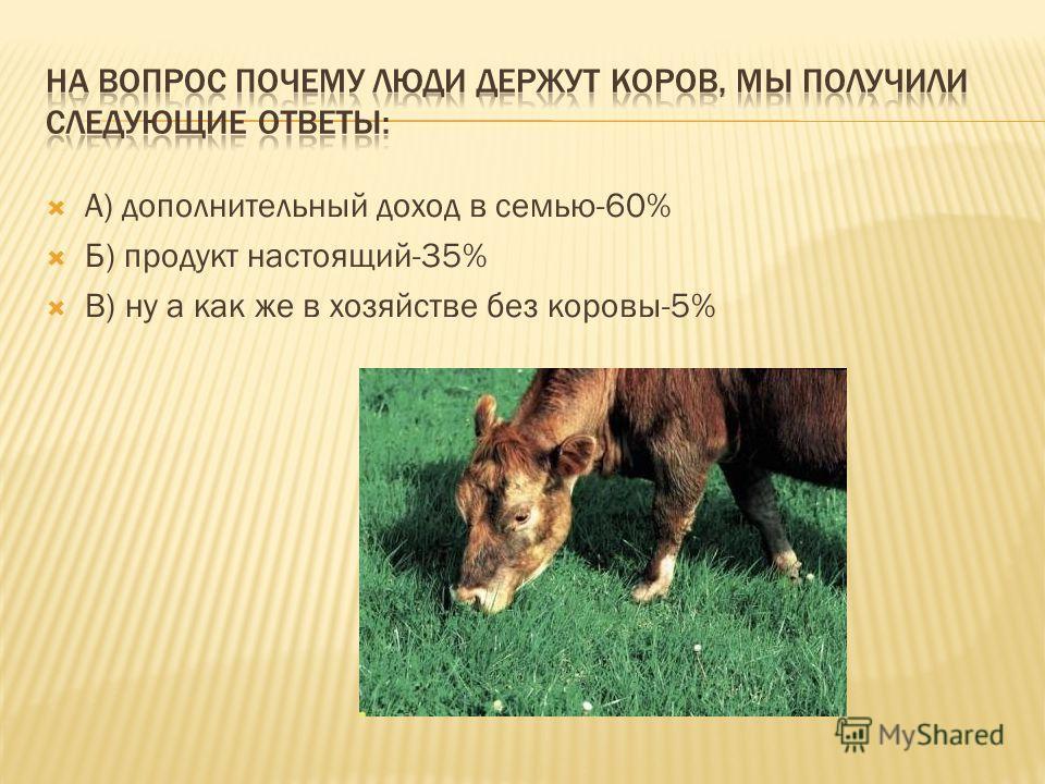 А) дополнительный доход в семью-60% Б) продукт настоящий-35% В) ну а как же в хозяйстве без коровы-5%