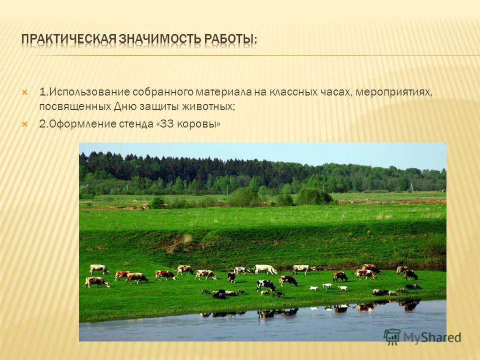 1.Использование собранного материала на классных часах, мероприятиях, посвященных Дню защиты животных; 2.Оформление стенда «33 коровы»