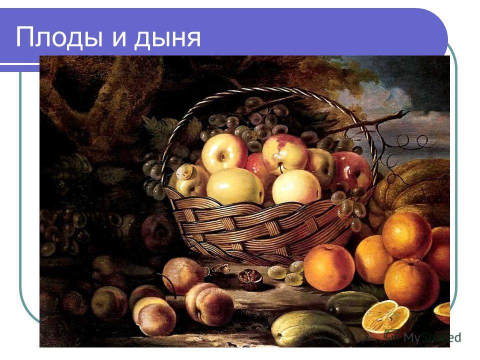 Плоды и дыня