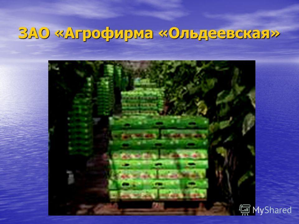 ЗАО «Агрофирма «Ольдеевская»