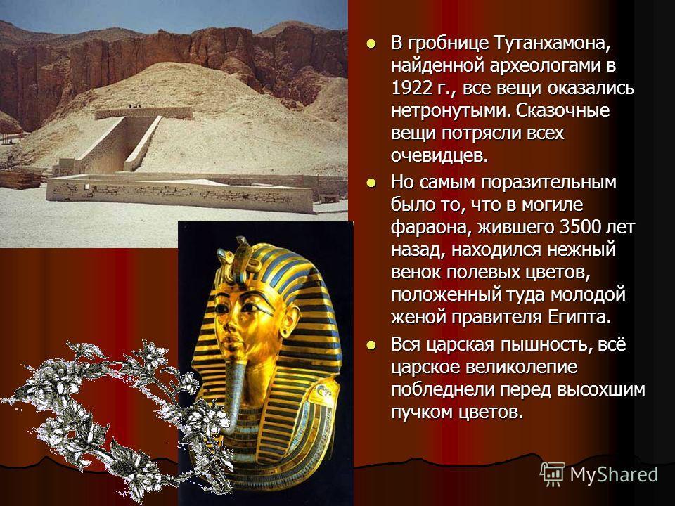 В гробнице Тутанхамона, найденной археологами в 1922 г., все вещи оказались нетронутыми. Сказочные вещи потрясли всех очевидцев. В гробнице Тутанхамона, найденной археологами в 1922 г., все вещи оказались нетронутыми. Сказочные вещи потрясли всех оче