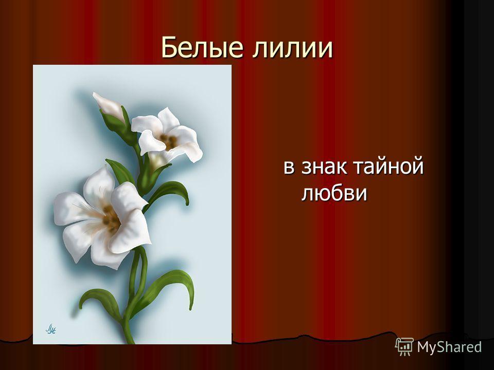 Белые лилии в знак тайной любви