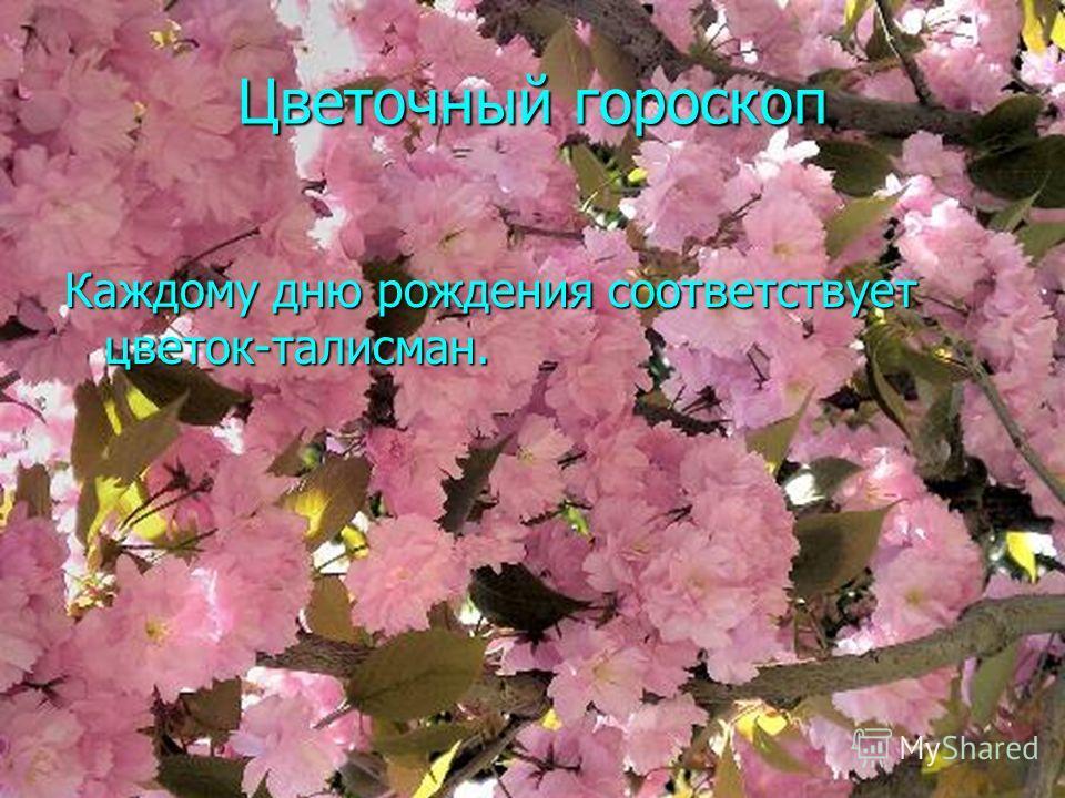 Цветочный гороскоп Каждому дню рождения соответствует цветок-талисман.