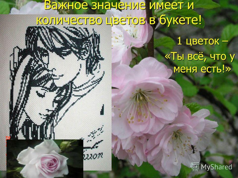 1 цветок – 1 цветок – «Ты всё, что у меня есть!» Важное значение имеет и количество цветов в букете!