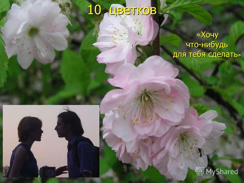 10 цветков «Хочу «Хочучто-нибудь для тебя сделать »