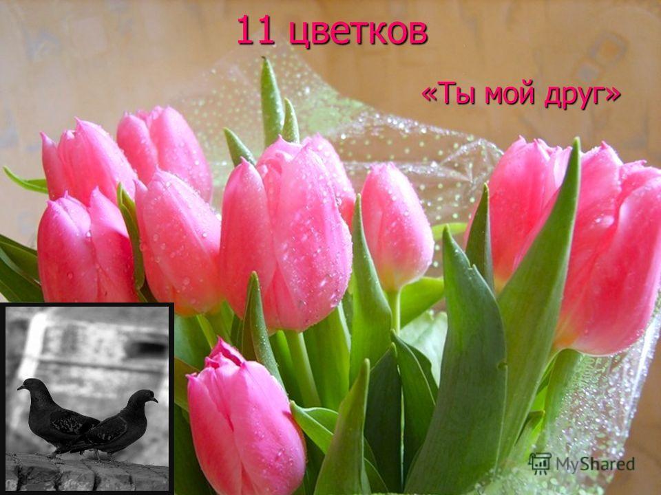 11 цветков «Ты мой друг»
