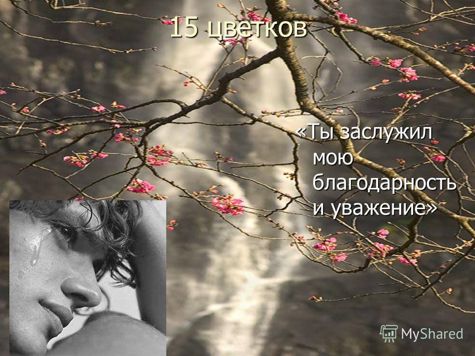15 цветков «Ты заслужил мою благодарность и уважение»