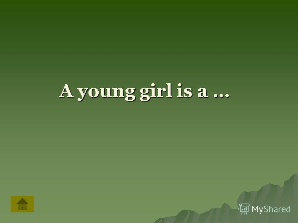 A young girl is a …