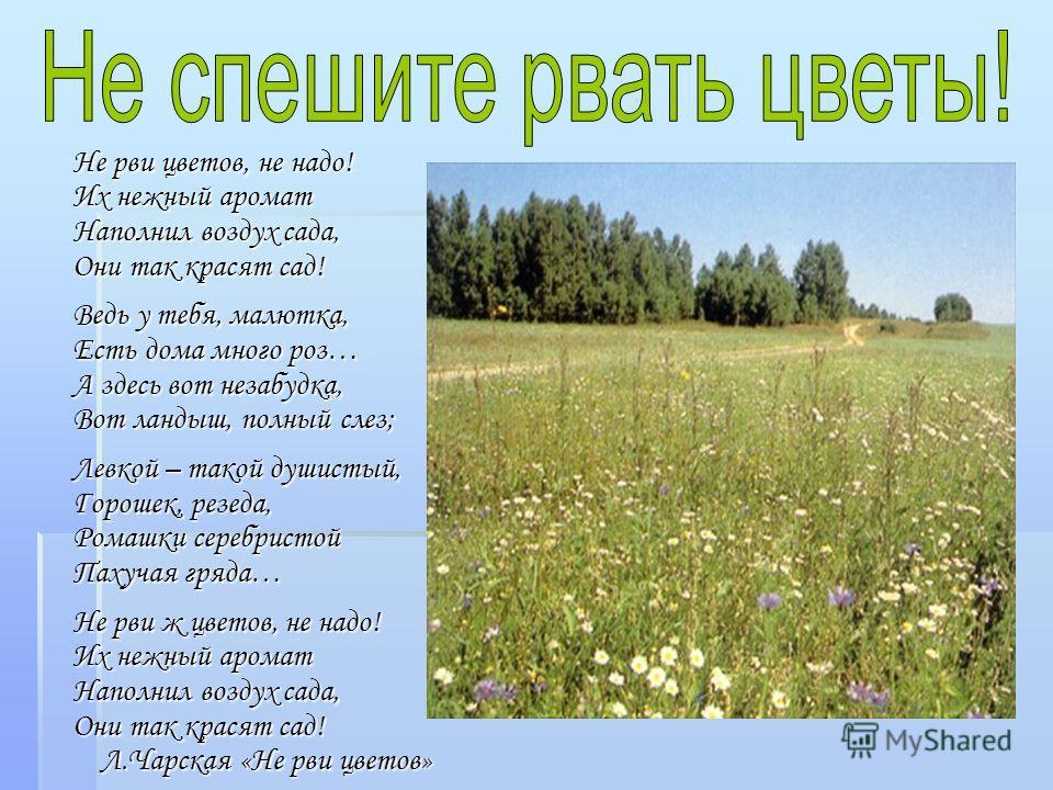 Не рви цветов, не надо! Их нежный аромат Наполнил воздух сада, Они так красят сад! Ведь у тебя, малютка, Есть дома много роз… А здесь вот незабудка, Вот ландыш, полный слез; Левкой – такой душистый, Горошек, резеда, Ромашки серебристой Пахучая гряда…