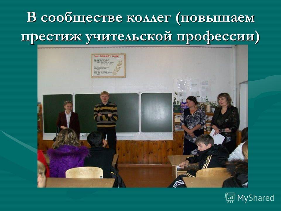 В сообществе коллег (повышаем престиж учительской профессии)