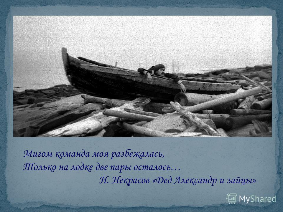 Мигом команда моя разбежалась, Только на лодке две пары осталось… Н. Некрасов «Дед Александр и зайцы»