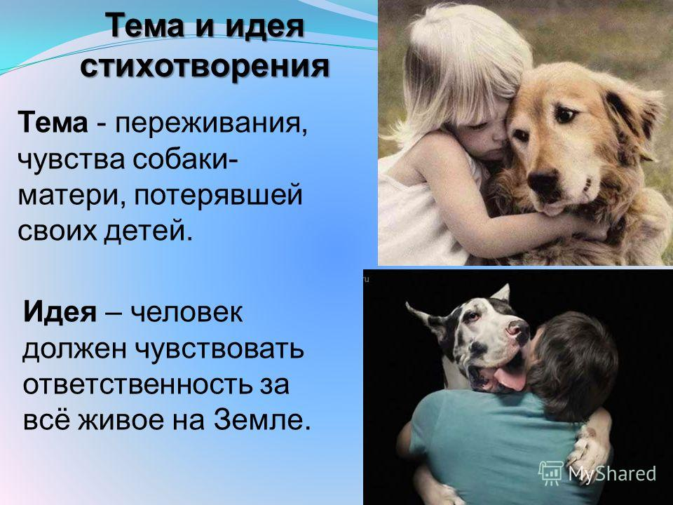 Тема и идея стихотворения Тема - переживания, чувства собаки- матери, потерявшей своих детей. Идея – человек должен чувствовать ответственность за всё живое на Земле.