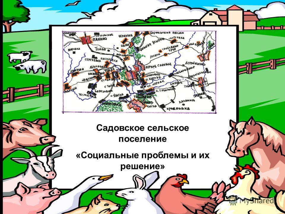 Садовское сельское поселение «Социальные проблемы и их решение»