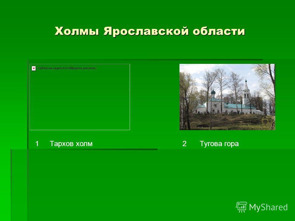 Холмы Ярославской области 12Тархов холмТугова гора