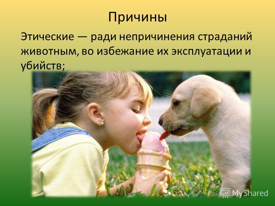 Причины Этические ради непричинения страданий животным, во избежание их эксплуатации и убийств;