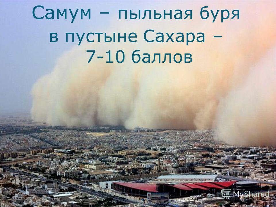 Самум – пыльная буря в пустыне Сахара – 7-10 баллов
