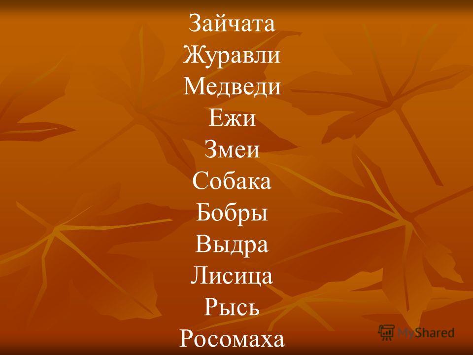 Зайчата Журавли Медведи Ежи Змеи Собака Бобры Выдра Лисица Рысь Росомаха