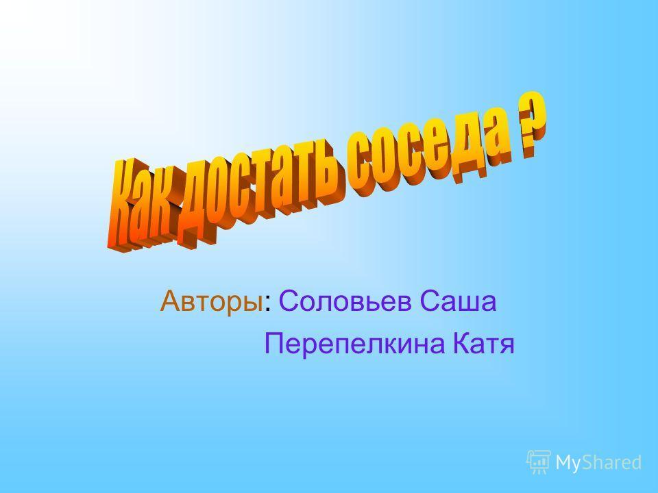 Авторы: Соловьев Саша Перепелкина Катя
