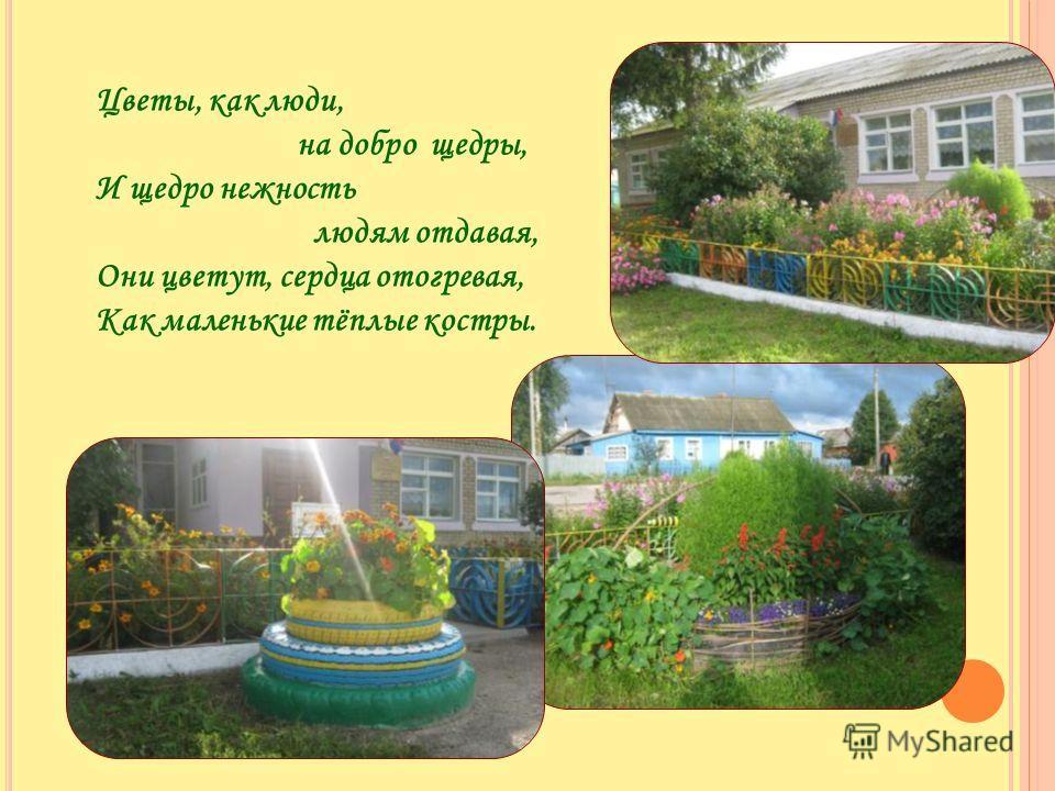 Цветы, как люди, на добро щедры, И щедро нежность людям отдавая, Они цветут, сердца отогревая, Как маленькие тёплые костры.
