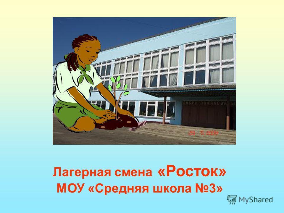 Лагерная смена «Росток» МОУ «Средняя школа 3»