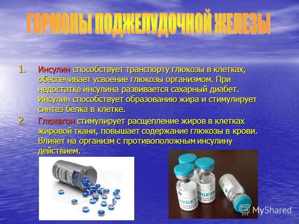 1. Инсулин способствует транспорту глюкозы в клетках, обеспечивает усвоение глюкозы организмом. При недостатке инсулина развивается сахарный диабет. Инсулин способствует образованию жира и стимулирует синтез белка в клетке. 2. Глюкагон стимулирует ра