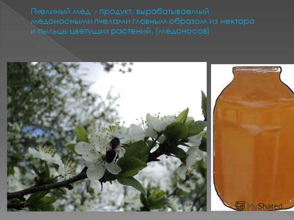 Пчелиный мед - продукт, вырабатываемый медоносными пчелами главным образом из нектара и пыльцы цветущих растений. (медоносов)
