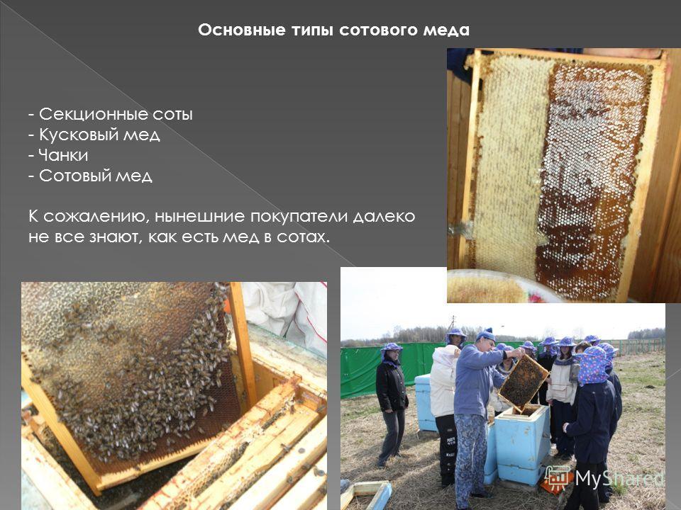 Основные типы сотового меда - Секционные соты - Кусковый мед - Чанки - Сотовый мед К сожалению, нынешние покупатели далеко не все знают, как есть мед в сотах.