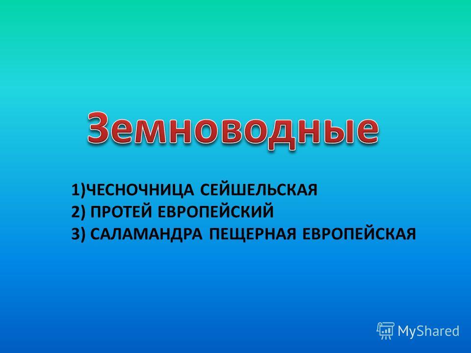 1)ЧЕСНОЧНИЦА СЕЙШЕЛЬСКАЯ 2) ПРОТЕЙ ЕВРОПЕЙСКИЙ 3) САЛАМАНДРА ПЕЩЕРНАЯ ЕВРОПЕЙСКАЯ