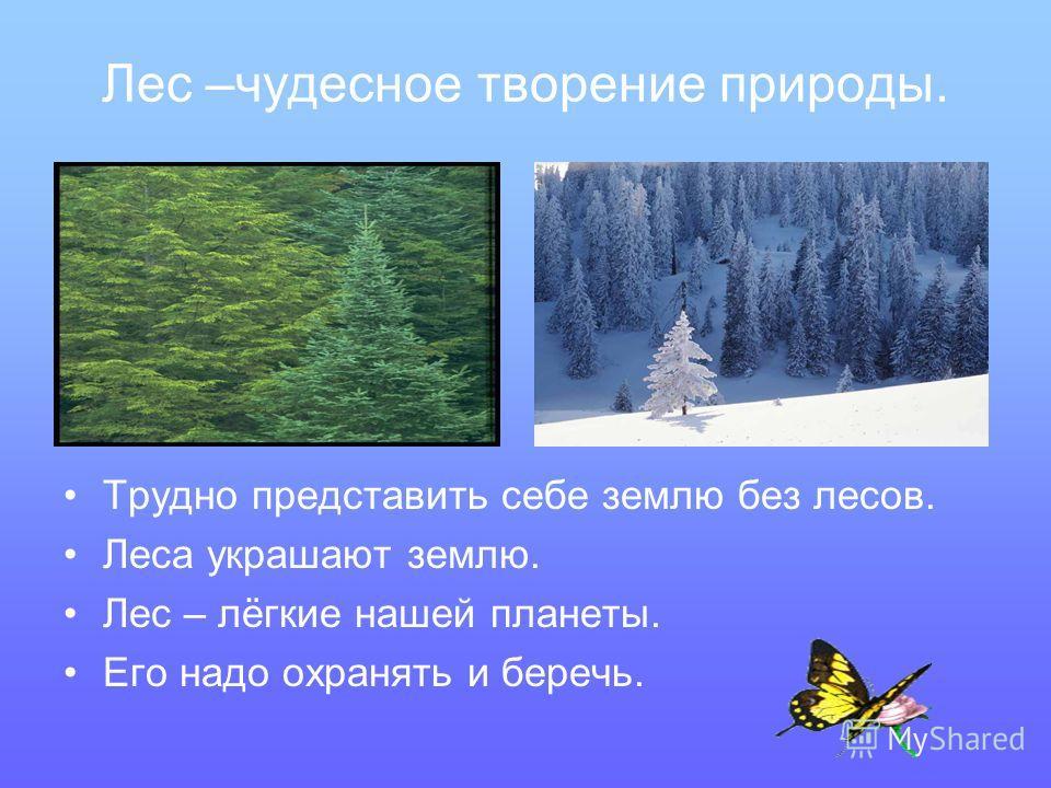 Лес –чудесное творение природы. Трудно представить себе землю без лесов. Леса украшают землю. Лес – лёгкие нашей планеты. Его надо охранять и беречь.