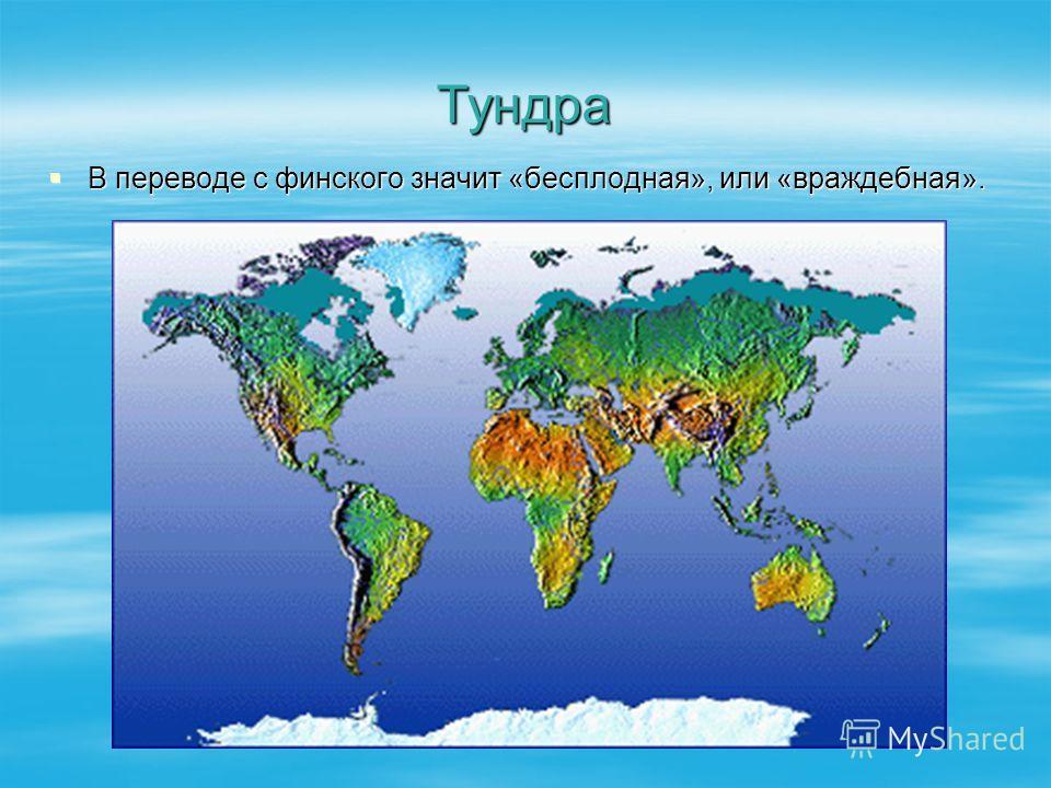 Тундра В переводе с финского значит «бесплодная», или «враждебная». В переводе с финского значит «бесплодная», или «враждебная».