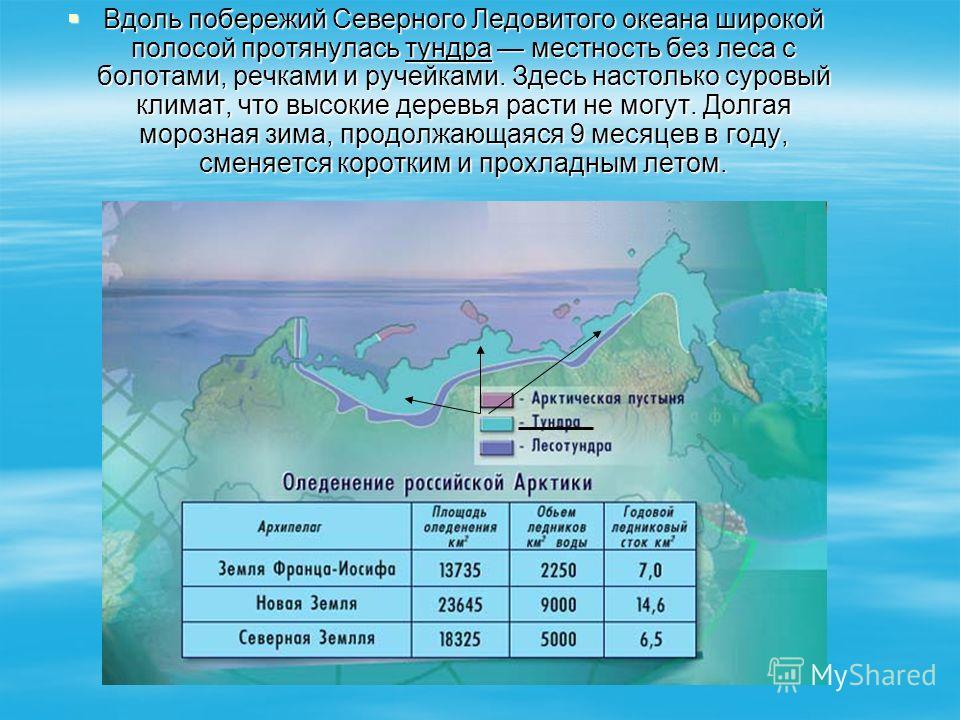 Вдоль побережий Северного Ледовитого океана широкой полосой протянулась тундра местность без леса с болотами, речками и ручейками. Здесь настолько суровый климат, что высокие деревья расти не могут. Долгая морозная зима, продолжающаяся 9 месяцев в го