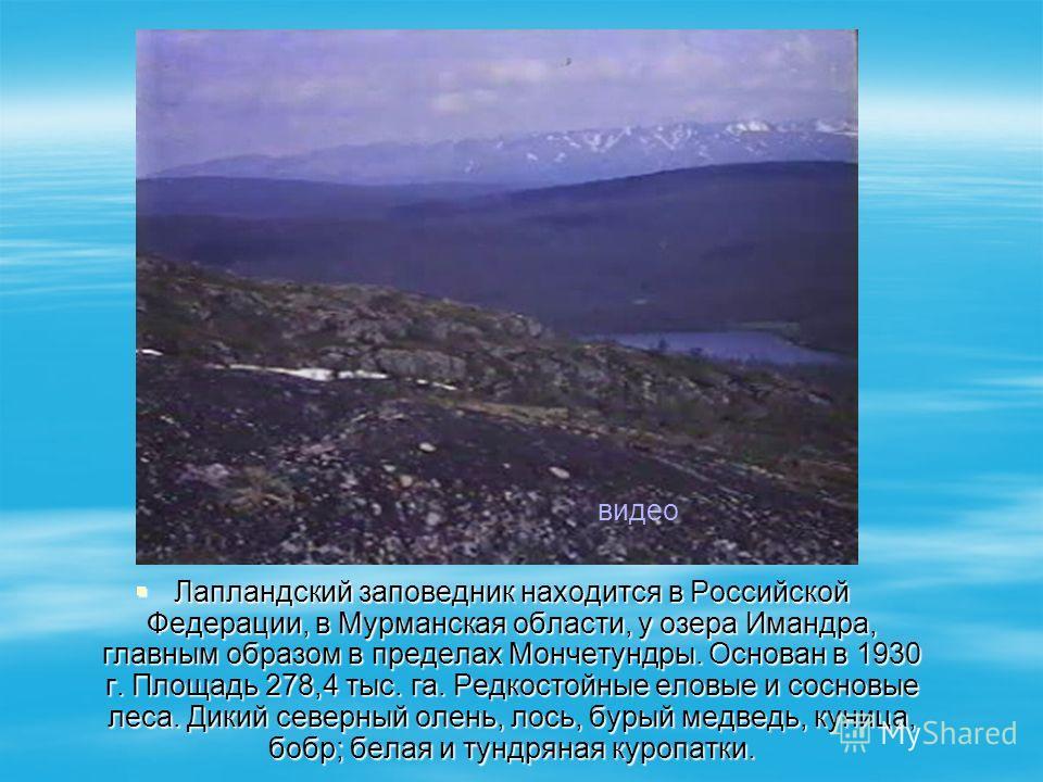 Лапландский заповедник находится в Российской Федерации, в Мурманская области, у озера Имандра, главным образом в пределах Мончетундры. Основан в 1930 г. Площадь 278,4 тыс. га. Редкостойные еловые и сосновые леса. Дикий северный олень, лось, бурый ме