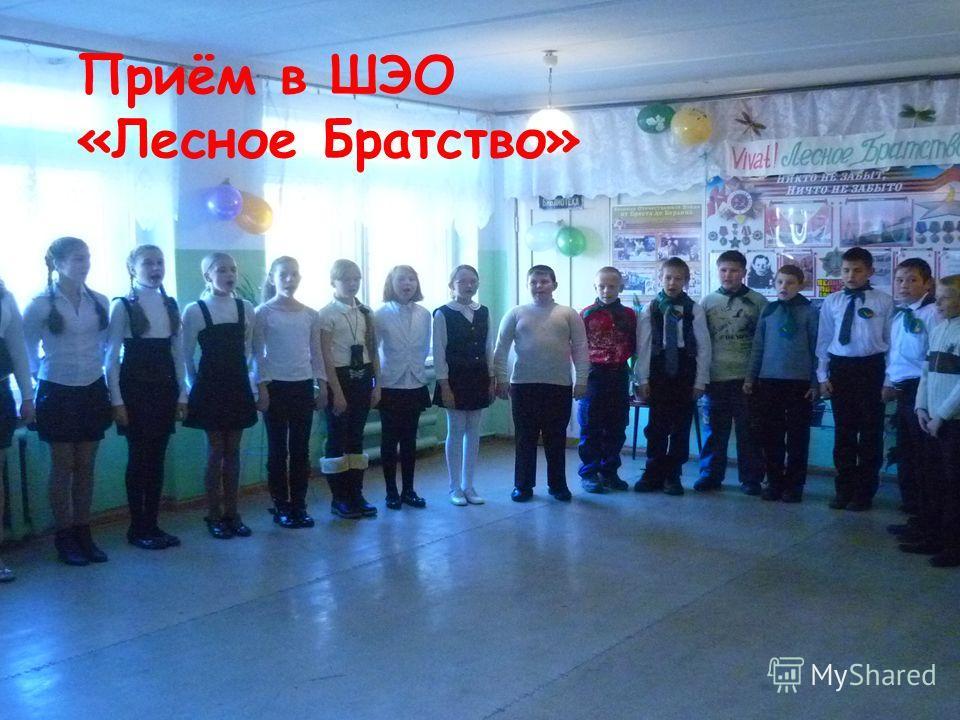 Приём в ШЭО «Лесное Братство»
