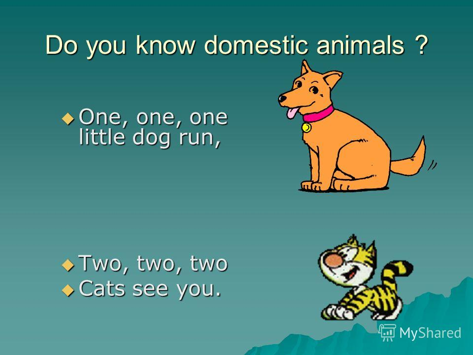 Do you know domestic animals ? One, one, one little dog run, One, one, one little dog run, Two, two, two Two, two, two Cats see you. Cats see you.