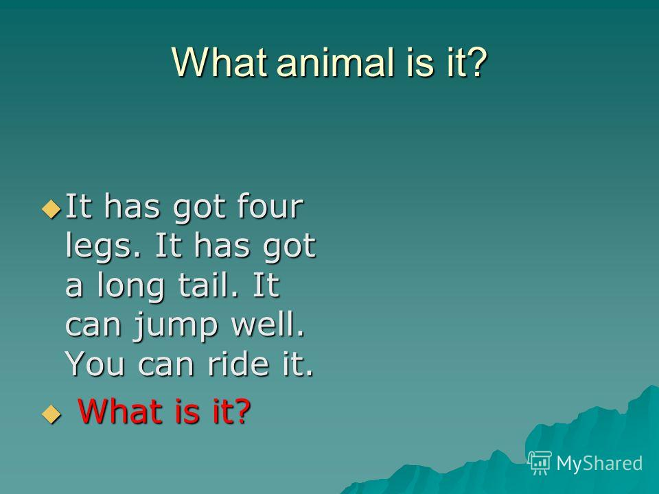 What animal is it? It has got four legs. It has got a long tail. It can jump well. You can ride it. It has got four legs. It has got a long tail. It can jump well. You can ride it. What is it? What is it?