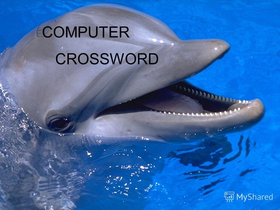 COMPUTER CROSSWORD