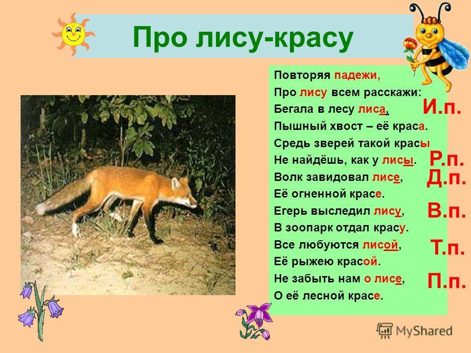 Про лису-красу Повторяя падежи, Про лису всем расскажи: Бегала в лесу лиса, Пышный хвост – её краса. Средь зверей такой красы Не найдёшь, как у лисы. Волк завидовал лисе, Её огненной красе. Егерь выследил лису, В зоопарк отдал красу. Все любуются лис
