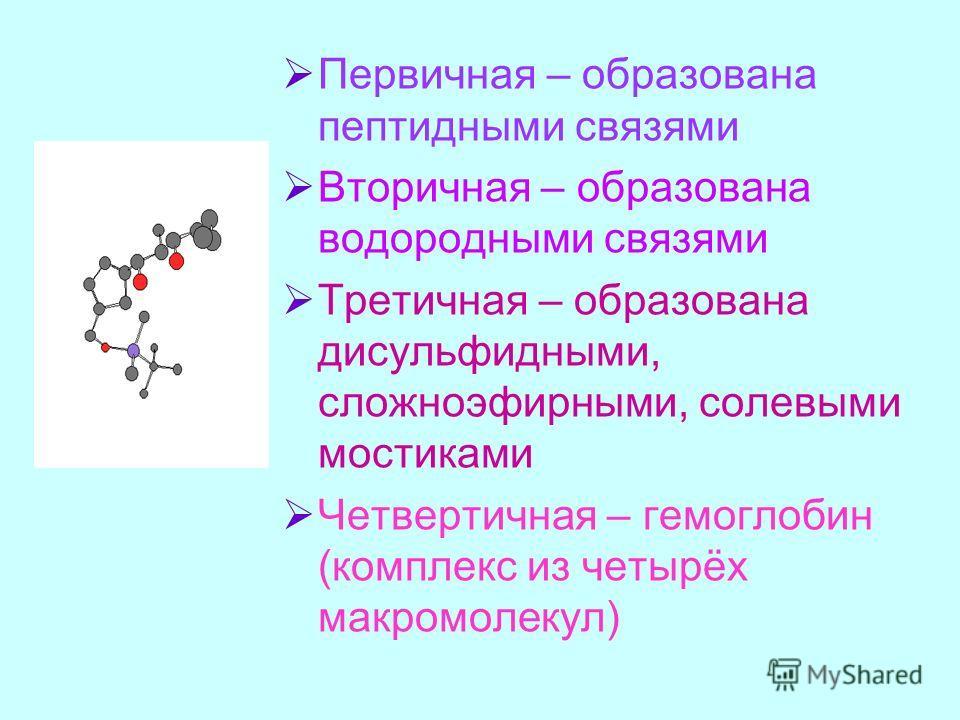 Первичная – образована пептидными связями Вторичная – образована водородными связями Третичная – образована дисульфидными, сложноэфирными, солевыми мостиками Четвертичная – гемоглобин (комплекс из четырёх макромолекул)