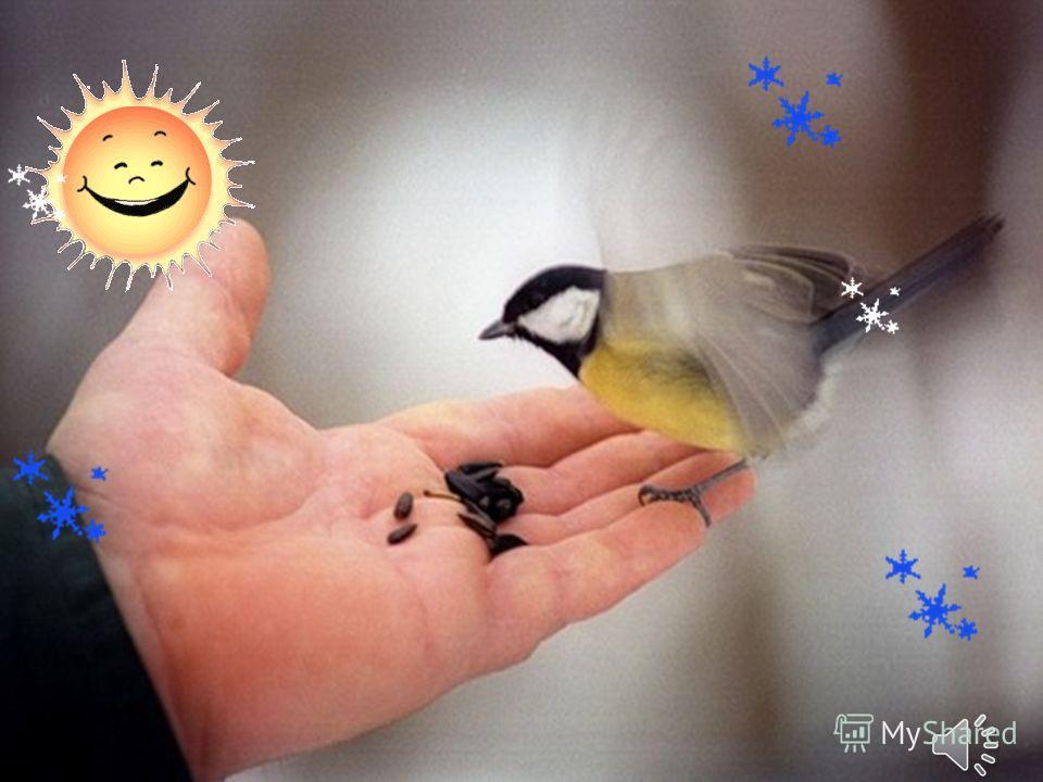 Кормушки для птиц Наклеить на картонную фигурку, используя клейстер любые семена. Наши кормушки готовы!
