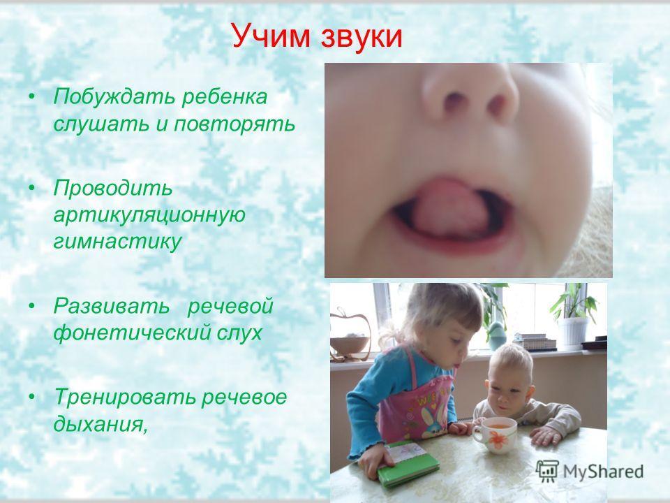 Учим звуки Побуждать ребенка слушать и повторять Проводить артикуляционную гимнастику Развивать речевой фонетический слух Тренировать речевое дыхания,