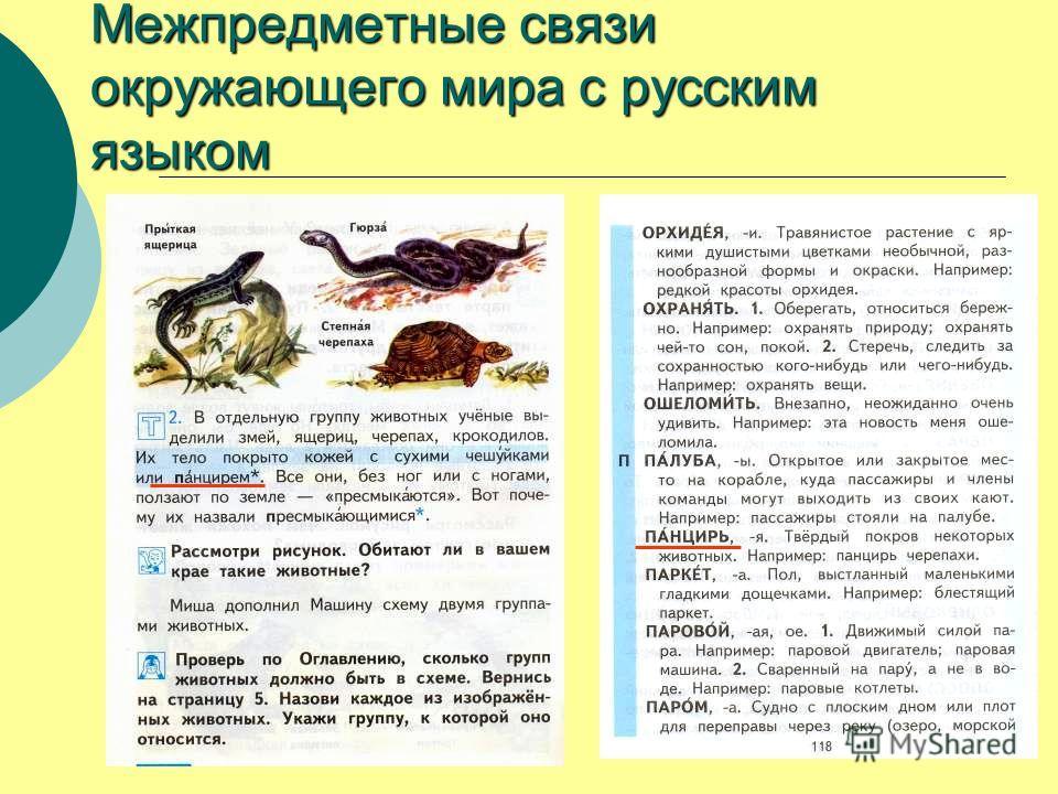 Межпредметные связи окружающего мира с русским языком